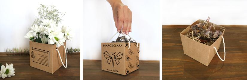 caja-de-carton-para-plantas-1